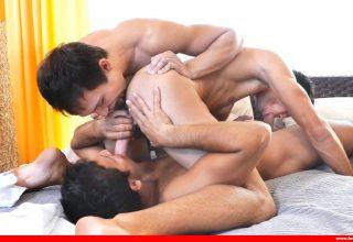 Sexe gay viril : du muscle et des poils , on aime !
