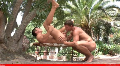 Sexe sous les palmiers : Sascha Chaykin & Phillipe Gaudin